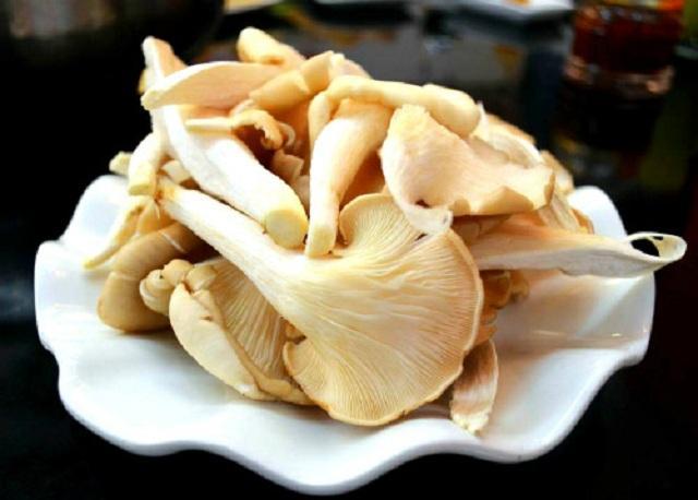 Nấm bào ngư là món ăn rất giàu dinh dưỡng